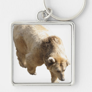Grizzly Keychains