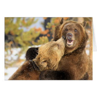 Grizzly Kiss Card