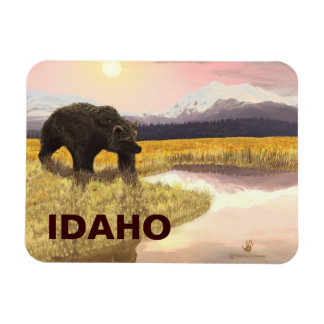 Grizzly Pond Rectangular Photo Magnet