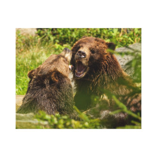 Grizzy Bears Play Fighting Canvas Print