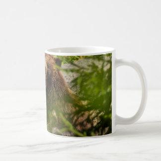 Grizzy Bears Play fighting Coffee Mug