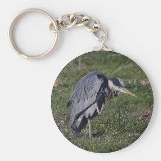 Grooming Heron Keychains