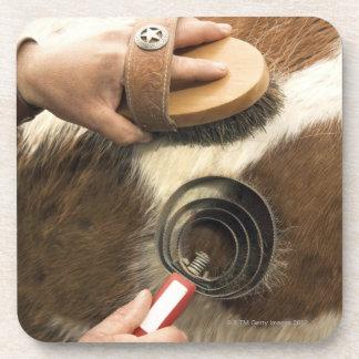 Grooming horse coasters