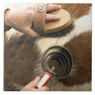 Grooming horse tile