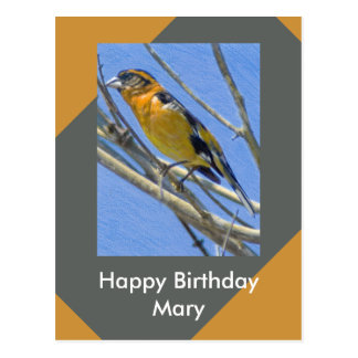 Grosbeck Drawing Birthday Template Greeting Postcard