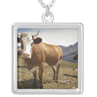 grossglockner hochalpenstrasse,hohe tauern, silver plated necklace
