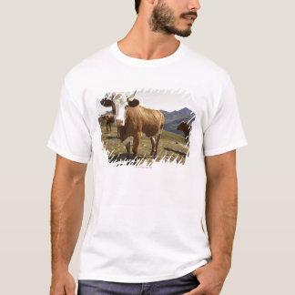 grossglockner hochalpenstrasse,hohe tauern, T-Shirt
