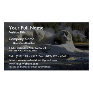 Grotto Geyser, Upper Geyser Basin, Yellowstone Nat Double-Sided Standard Business Cards (Pack Of 100)