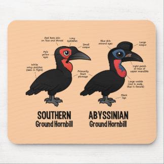 Ground Hornbil Statistics Mouse Pad