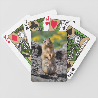 Ground Squirrel Alert for Danger Bicycle Playing Cards