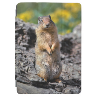 Ground Squirrel Alert for Danger iPad Air Cover