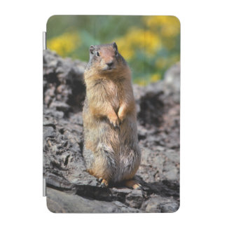 Ground Squirrel Alert for Danger iPad Mini Cover
