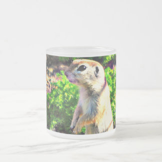 Ground Squirrel Frosted Glass Mug