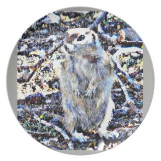 Ground Squirrel in the Rain Melamine Plate