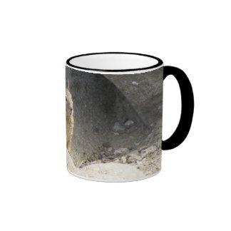 Ground Squirrel Coffee Mugs