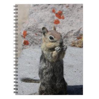 Ground Squirrel Notebook