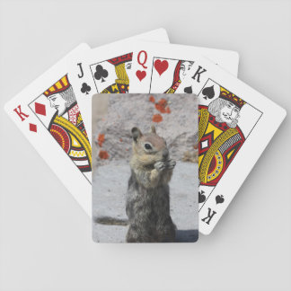 Ground Squirrel Playing Cards