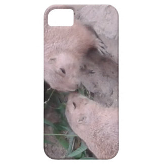 Ground squirrels case for the iPhone 5
