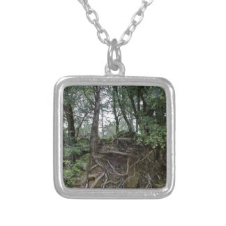 grounded silver plated necklace