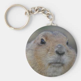 groundhog basic round button key ring