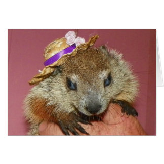 Groundhog Clara Note Card 1