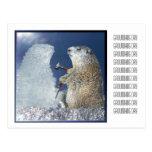 Groundhog Day Ice Sculpture Postcard