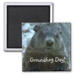 Groundhog Day!! Refrigerator Magnet