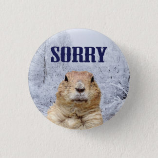 Groundhog Day Sorry 3 Cm Round Badge