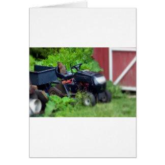 Groundhog on a  Lawn Mower Card