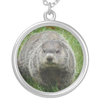 Groundhog Silver Plated Necklace