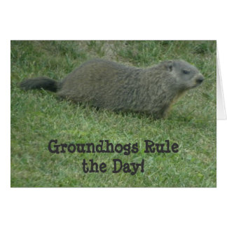 Groundhogs Rule the Day - Groundhog Day Card