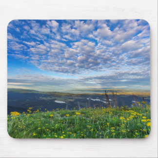 Groundsel Wildflowers in the Swan Range Mouse Mat