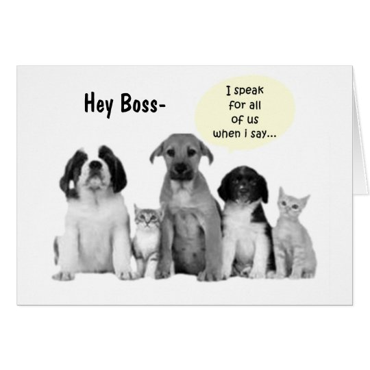 "GROUP BOSS'S BIRTHDAY HUMOR"" DOGS DOGS DOGS CARD"