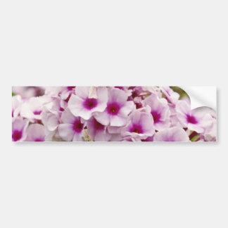Group of flowers flowers car bumper sticker