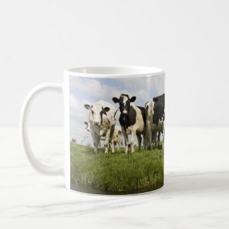 Group of Friesian cows Coffee Mug