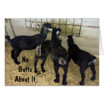 GROUP OF GOATS SEND NO BUTTS ABOUT IT BIRTHDAY FUN
