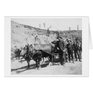 Group of Gold Prospectors Photograph Greeting Cards