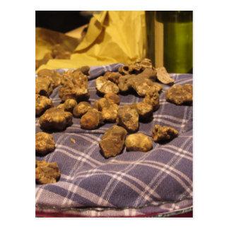 Group of italian expensive white truffles postcard