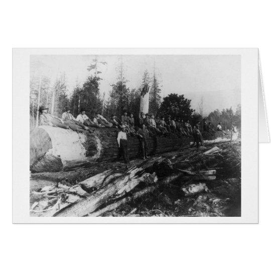 Group of Lumberjacks on Large Log Photograph Card