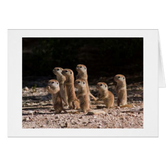 GROUP OF PRARIE DOGS ARE SAYING HAPPY BIRTHDAY GREETING CARD