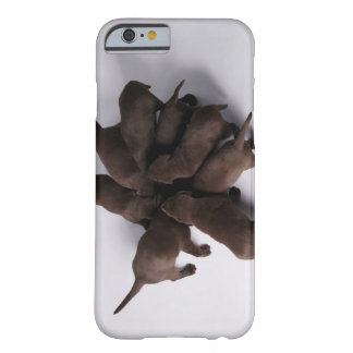 Group of puppies with heads together barely there iPhone 6 case