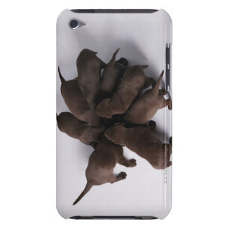Group of puppies with heads together Case-Mate iPod touch case