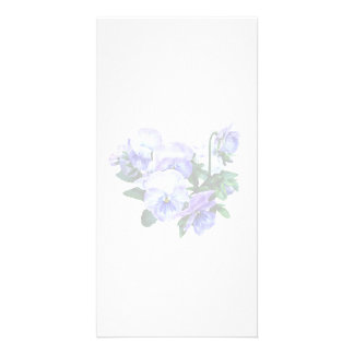 Group of Purple Pansies and Leaves Photo Greeting Card