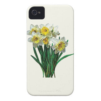 Group of White Daffodils iPhone 4 Case-Mate Case
