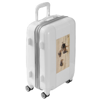 Group of wildebeest luggage