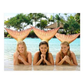 Group On The Beach Postcards