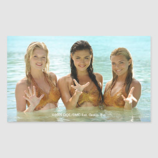 Group Pose In Water Rectangular Sticker
