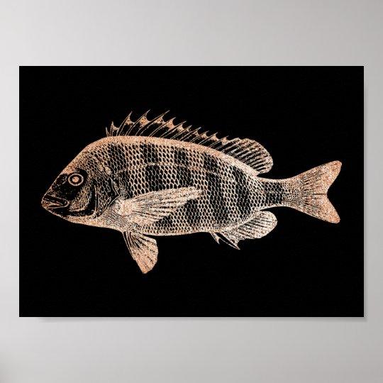 Grouper Fish Sea Ocean Black Rose Gold Metallic