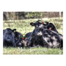 GROUPON Black Angus Holly Merry Cowmas Greeting Custom Invitations