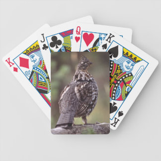 grouse bicycle playing cards